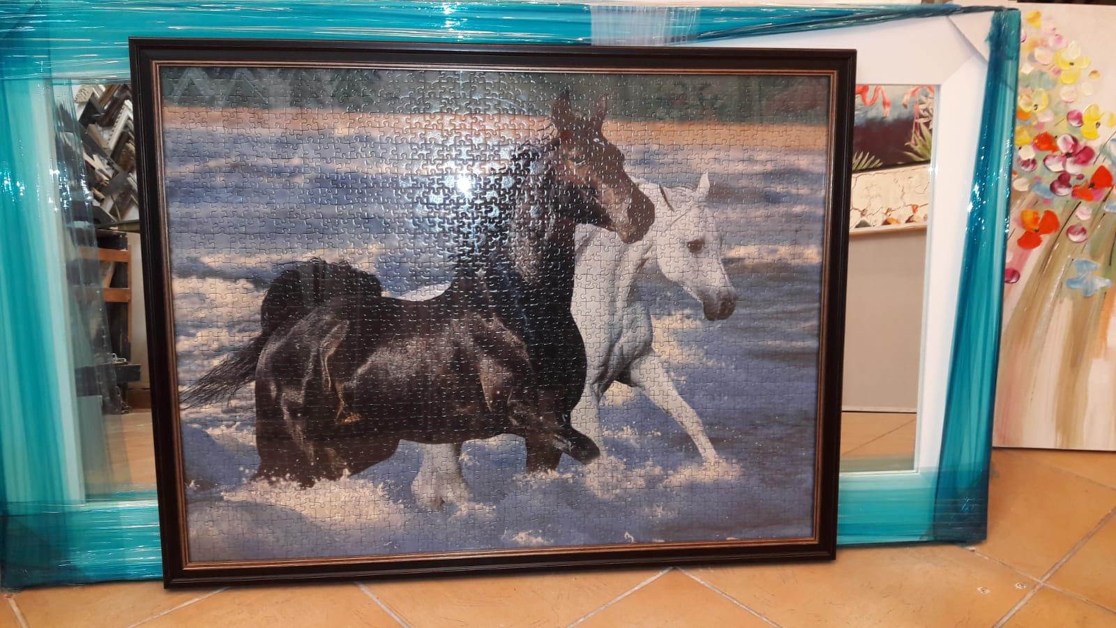 פאזל סוסים - סוס שחור ולבן